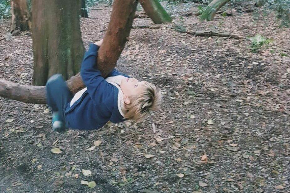 Kanadyjskie szkolne zdziwienia Blog Kanada sie nada o polskiej rodzinie w Vancouver i emigracji do Kanady maly chlopiec wspina sie na drzewo w parku