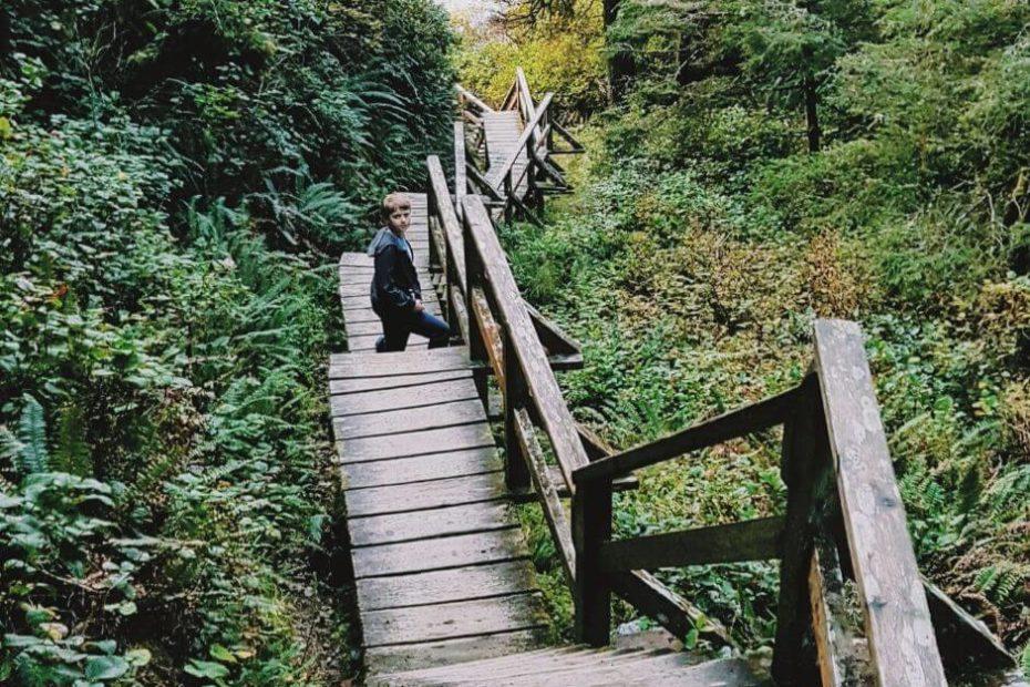 chlopiec na szlaku w lesie wpis brak kanadyjskiego wykształcenia i doświadczenia nie oznacza brak szansy na prace Blog Kanada sie nada o polskiej rodzinie w Vancouver i emigracji do Kanady