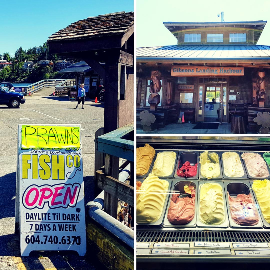 Sunshine Coast_Kanada się nada_blog o polskiej rodzinie w Vancouver i emigracji do Kanady_16
